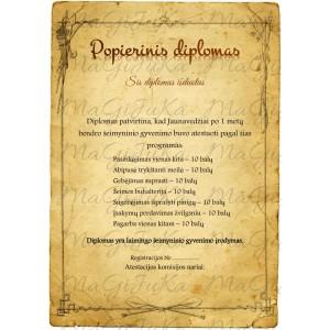 """Popierinių vestuvių diplomas """"3"""""""