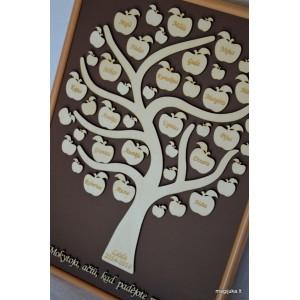 Obuoliukų medis Mokytojai